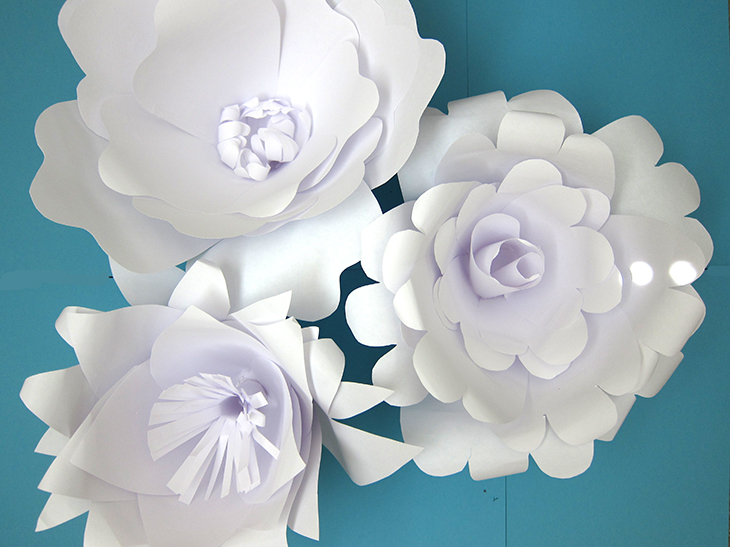 Paper Flower Backdrop: Flower Variations